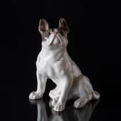 French Bulldog, Royal Copenhagen dog figurine