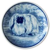 Ravn dog plate no. 17, Pekingese