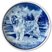 Ravn dog plate no. 56, Cairn Terrier