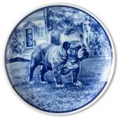 Ravn dog plate no. 65, English Bulldog