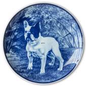 Ravn dog plate no. 88, French bulldog