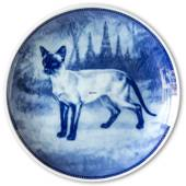 Ravn cat plate no. 3, Siamese cat