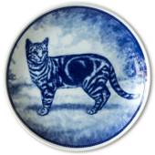 Ravn cat plate no. 5, European short haired cat