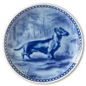 Tove Svendsen Dog plate, Smooth haired Dachshund
